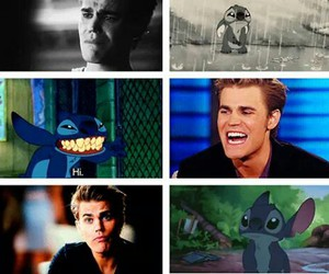 paul wesley, stitch, and stefan salvatore image