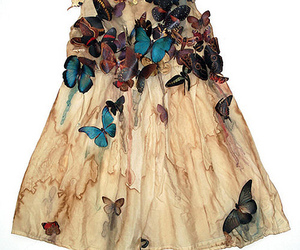 butterfly and dress image