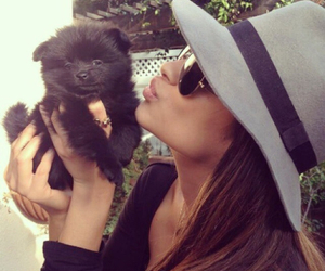 dog, shay mitchell, and puppy image