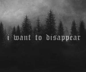 disappear, text, and quotes image