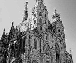 austria, vienna, and domkirche st stephan image