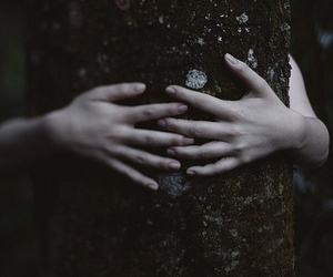 hands, nature, and hug image
