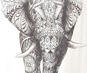 animal, elephant, and scetch image