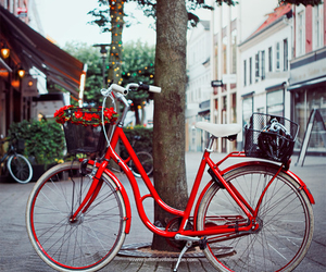 bike and red image