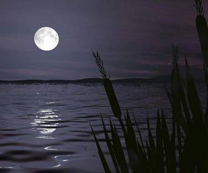 beautiful nature, moon, and lake image