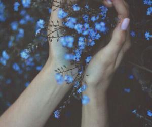 amazing, blue, and photo image