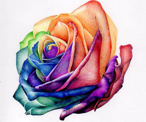 rose, art, and flower image