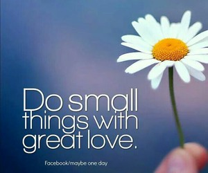 flower, kind, and quote image