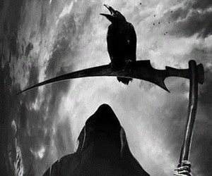 death, crow, and black and white image