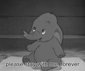 disney, dumbo, and forever image