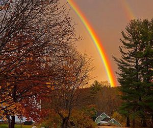 rainbow, autumn, and fall image