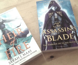 assassin, books, and crown of midnight image