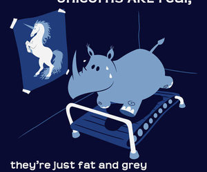 unicorn, rhino, and real image