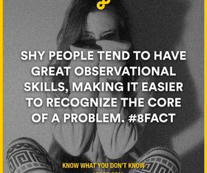 shy, 8fact, and observational skills image