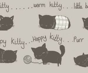 cat, kitty, and sweet image