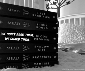 vampire academy, rose hathaway, and richelle mead image