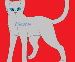 warrior cats, blustar, and bluestar's prophecy image