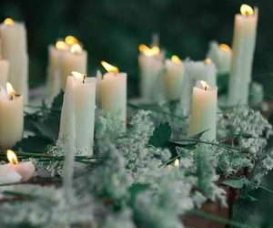 candle, nature, and flowers image