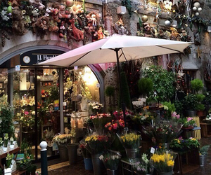 flowers, awesome, and shop image