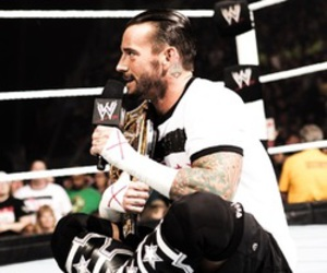 wwe, cm punk, and bitw image