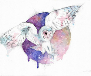 owl and watercolor image