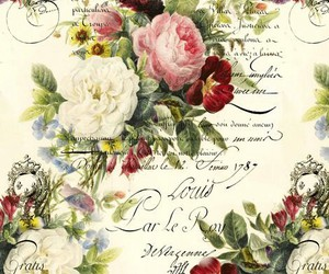 background, beautiful, and Collage image