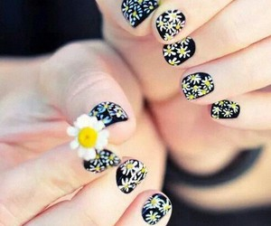 daisy, nails, and floral image