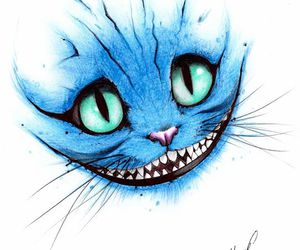 blue, cat, and drawing image