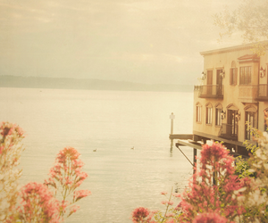 flowers, house, and lake image