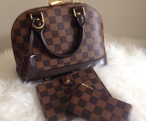 Louis Vuitton and wallet image