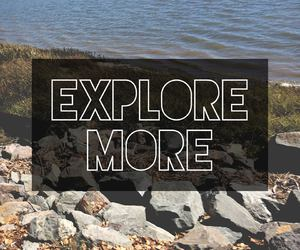 explore, more, and quote image