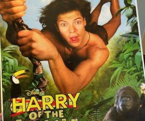 Harry Styles, one direction, and jungle image