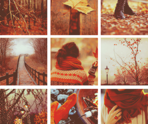 autumn, scarf, and sweater image