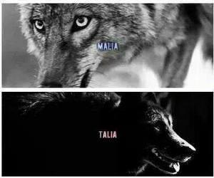 teen wolf, derek hale, and laura hale image