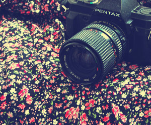 camera, photography, and flowers image