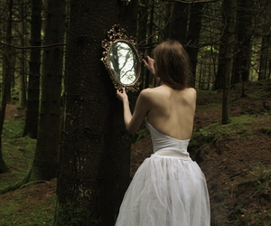 mirror and forest image
