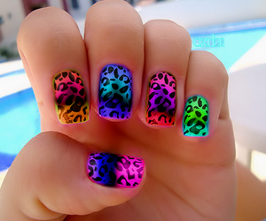 color, leopard, and nails image