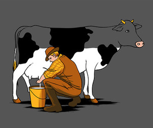 milk and cow image