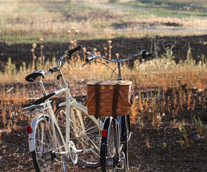 bike, nature, and autumn image