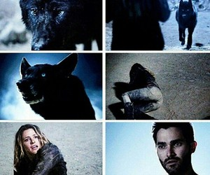 teen wolf, derek hale, and kate argent image