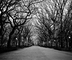 beautiful, black and white, and new york city image
