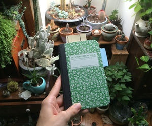 plants, nature, and indie image