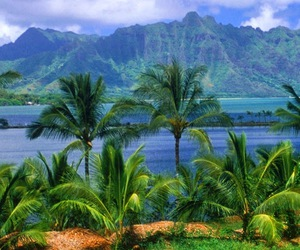 awesome, beach, and islands image