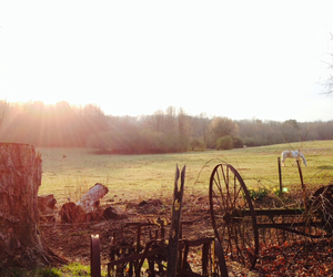 country, home, and morning image