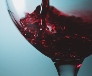 wine and drink image