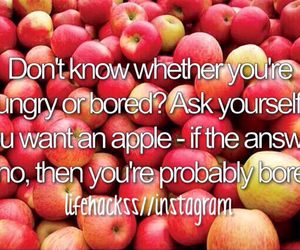 apple, fitness, and food image
