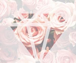 flowers, diamond, and rose image