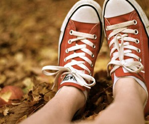 fall, nature, and shoes image