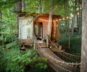 treehouse, forest, and house image