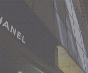 chanel, header, and brown image